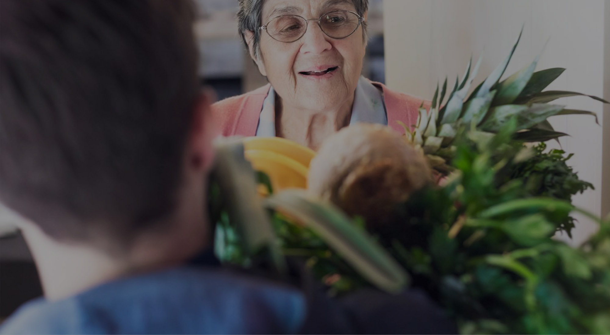 Live-In Care Quality Services